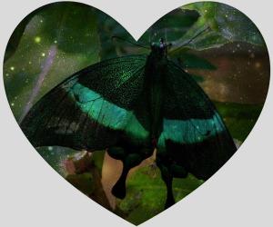 butterflyinheart