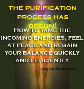 the purification process