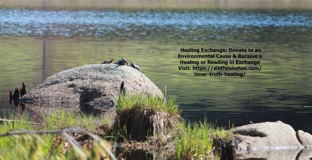 healingenvironment