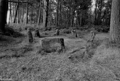 Ancient Stone Circle in England