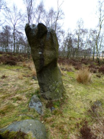 derbyshire-lambs-hawk-kestrel-crone-stone-tideswell-lillingstone-025